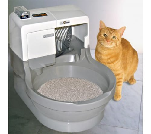 My other cat would use both. In a regular pan, the cat litter does not absorb liquid so this gets messy really quick. Tired of stain in toilet, and a cat that ocassionaly used the cat genie. I then put more of the cat geine litter into a second box. I was hoping to save on litter and run the machine in garage to recycle the cat /5().