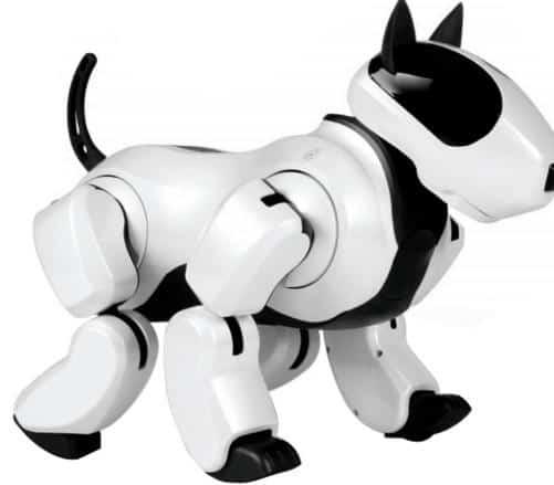 The Next Household Robot Robotic Pets All Home Robotics