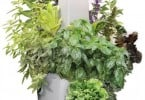 Root Smart Indoor Plant Growing System