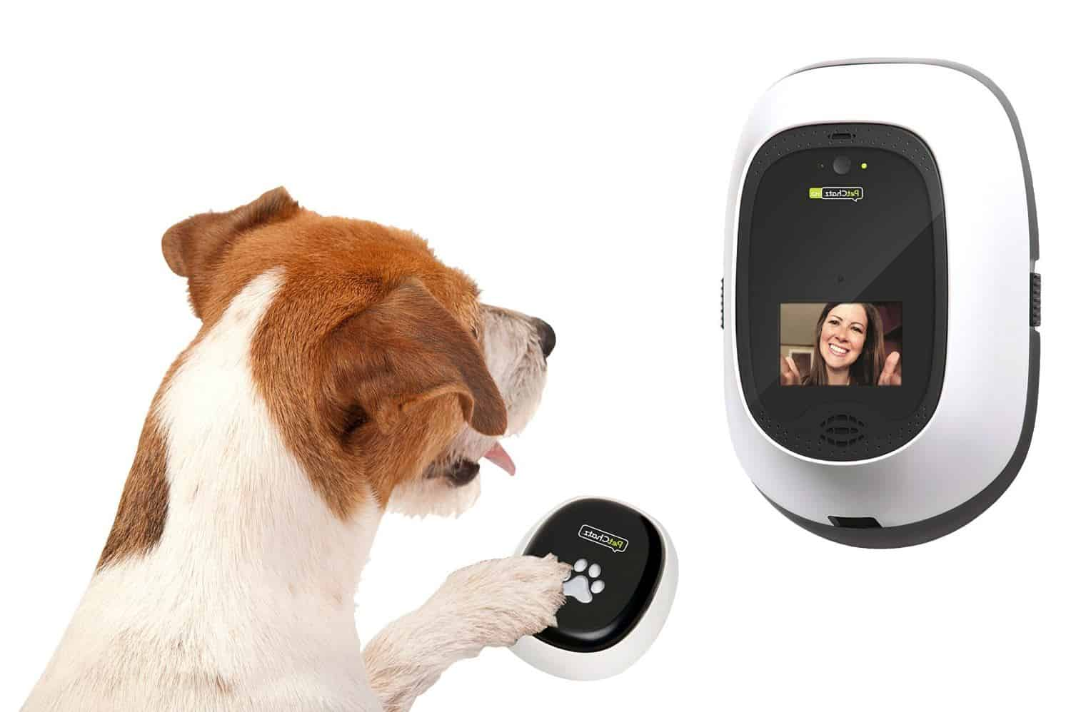 best smart pet cameras and dispensers for 2018 all home. Black Bedroom Furniture Sets. Home Design Ideas