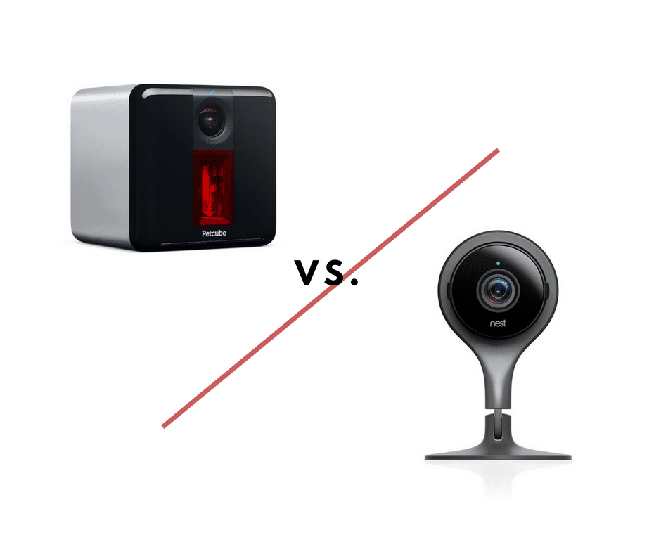 Petcube vs  Nest Cam: Which Pet Camera is Best? | All Home